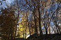 Bern Canton - panoramio (231).jpg