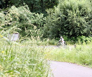 Ardenwald-Johnson Creek, Portland, Oregon - Image: Bicycles in Tideman Johnson Natural Area Ardenwald Johnson Creek Portland Oregon