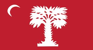 Flag of South Carolina - The flag flown by Citadel cadets over Morris Island, South Carolina during the American Civil War