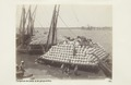 Bild från familjen von Hallwyls resa genom Egypten och Sudan, 5 november 1900 – 29 mars 1901 - Hallwylska museet - 91756.tif