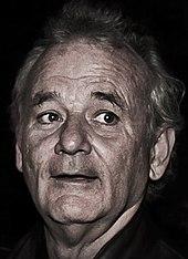 bill murray wikipedia