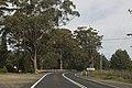 Bilpin NSW 2758, Australia - panoramio (26).jpg