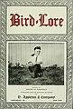 Bird-lore (1920) (14770675603).jpg