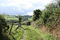 Bishop's Nympton, footpath to Avercombe Mill - geograph.org.uk - 252937.jpg