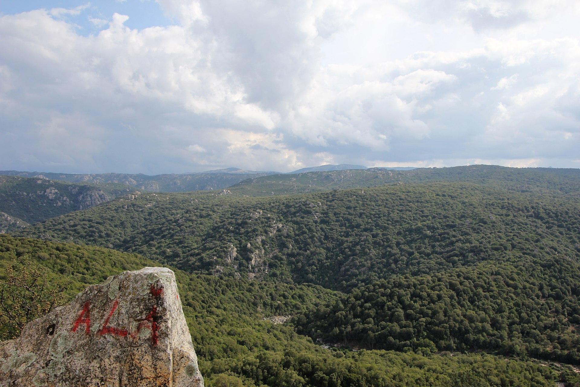 Bitti-Alà dei Sardi, foresta di Sos Littos-Sas Tumbas (02).jpg
