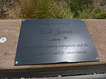 Black Point Wildlife Drive, Merritt Island FL - Flickr - Rusty Clark (202).jpg