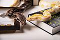 Boa and python.JPG