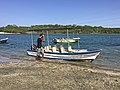 Boat for our mangrove tour (24356699380).jpg