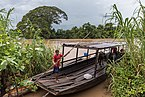 Boat with buffalos on the river bank of the Mekong.jpg