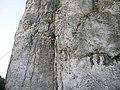 Bolechowice - panoramio.jpg