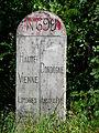 Borne N699 Maisonnais-Busserolles.JPG