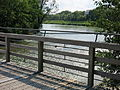 Brücke aus Lärchenholz.jpg