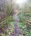 Bridle Path - Cottingley Moor Road - geograph.org.uk - 642965.jpg