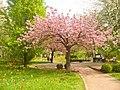 Britzer Garten (Britz Garden) - geo.hlipp.de - 36175.jpg