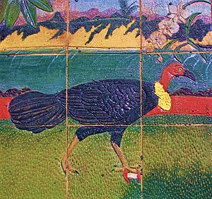 Australian brushturkey - Male Brush Turkey on tiles. Cooktown, Queensland