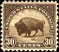 Buffalo stamp 20c 1923 issue.jpg