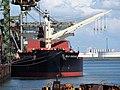 Bulk Endurance (ship, 2017) IMO 9782003 Mississippihaven, Port of Rotterdam pic2.JPG
