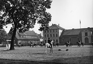 Celle State Stud - The State Stud of Celle in 1956