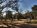 Bunko no mori park - Shinagawa - Feb 10 2020 various 16 14 58 521000.jpeg
