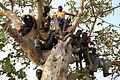 Burundian refugees children on tree. (20124214379).jpg