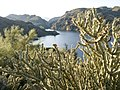 Butcher Jones Trail - Mt. Pinter Loop Trail, Saguaro Lake - panoramio (40).jpg