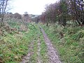 Byway to Great Ridge - geograph.org.uk - 1083721.jpg