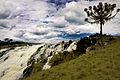Cachoeira do Passo do S - Parque Estadual do Tainhas 03.jpg