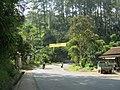 Cadas Pangeran, Bandung - Sumedang - panoramio.jpg