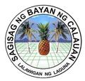 Calauan Laguna.png