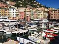Camogli, Liguria (8858797439).jpg