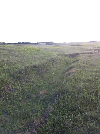 Camp Hughes - Image: Camp Hughes Trenches 3
