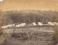 Camp at Gettysburg (Elevated view of troops and officers in ... (3110012125).jpg