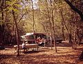 Campers at Manatee Springs State Park - Chiefland (20308338818).jpg