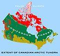 Canadian tundra 1.jpg