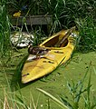 Canoe and duck - geograph.org.uk - 949285.jpg