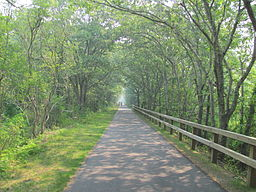 Cape Cod Rail Trail, East Brewster MA.jpg
