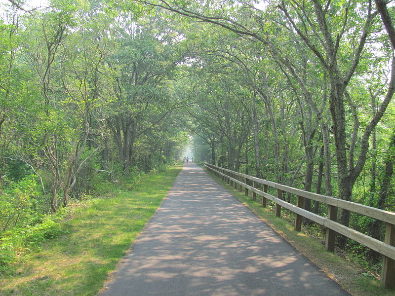 File:Cape Cod Rail Trail, East Brewster MA.jpg