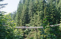 Capilano Suspension Bridge (7960609504).jpg