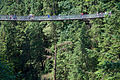 Capilano Suspension Bridge 777.jpg