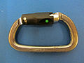 Carabiner for climbing Petzl ball lock.JPG