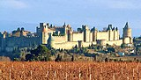 Carcassonne-vignes.jpg