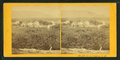 Center Harbor, N.H, from Robert N. Dennis collection of stereoscopic views.png