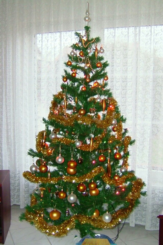 Christmas tree in Poland 2004