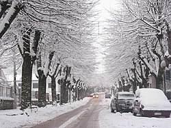 Circello (BN) Via Roma con la neve.JPG