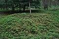Cirkels in het bos (36336049422).jpg