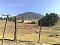 Clasico campo mexicano - panoramio.jpg
