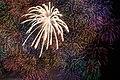 Close-up of 3 shaku fireworks (7721374958).jpg