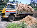 Coir fibers transported1.jpg
