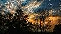 Colourfull sky.jpg