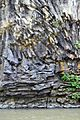 Columnar jointed basalt in Daegyocheon, a branch of Hantan River, at Cheolwon, Gangwon-do, South Korea, image 4.jpg